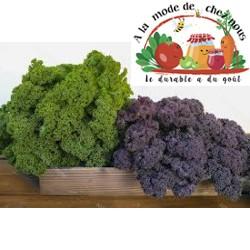CHOU FRISE (Kale) ROUGE ET...