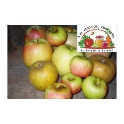 Pommes de notre Verger H-T...